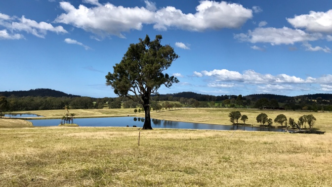 Bega Valley, Dairy Country