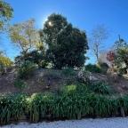 Highgrove Living, Lockdown Gardening